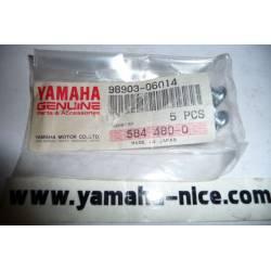 Vis de bavette origine YAMAHA TW 200 de 1989 et 1994 / TDR 125 de 1993/1994 et XV 250 VIRAGO de 1989, 1992 et 1994
