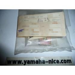 Ecrou plaque YAMAHA XT 600 de 1986 à 1989, XT 500 de 1988 à 1989, FZR 250 de 1989 à 1993